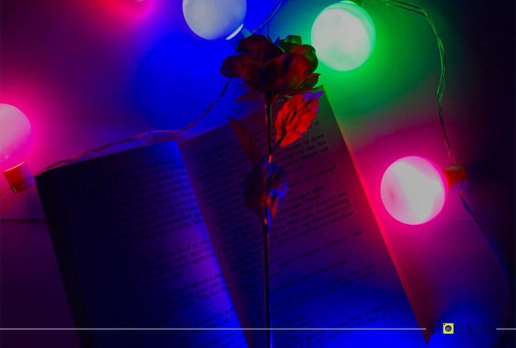 Flower on Book with Lights Around