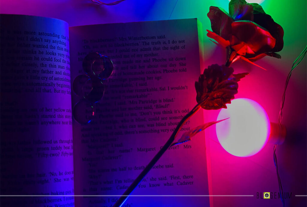 Rings and Flower on the Book with Lights Around